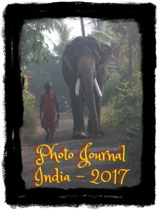 Mission: India 2017